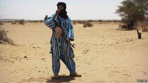 Mali rebel