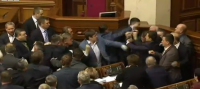 MPs fight in parliament